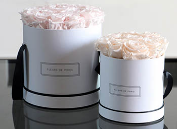 Fleurs de Paris Rosen roses Rosenbox Infinity Collection